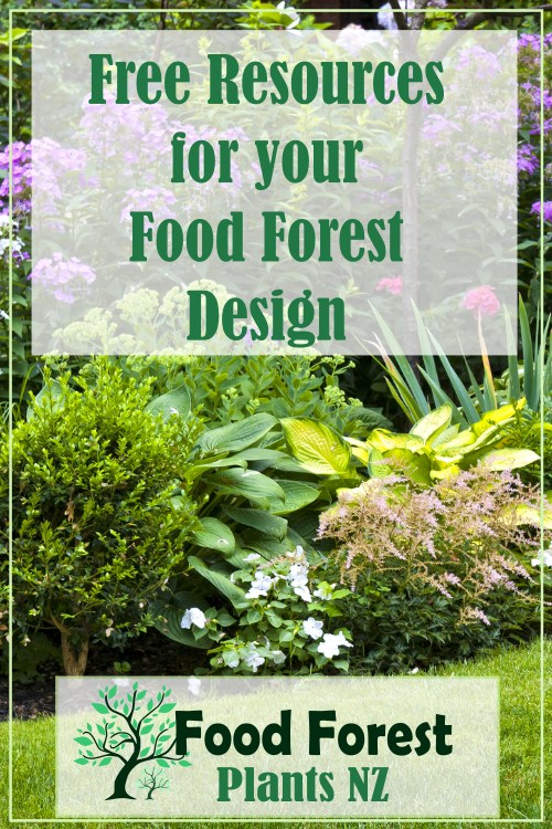 Free resources for growing a food forest garden