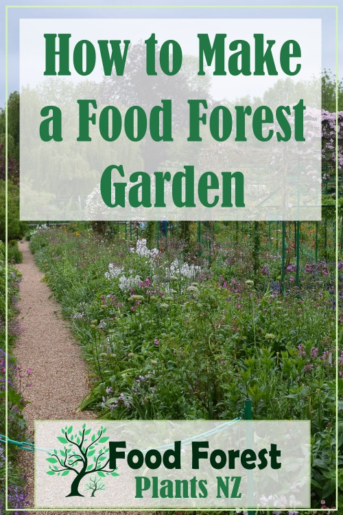 How to Make a Food Forest Garden. Notes from a free workshop.